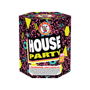 House-Party