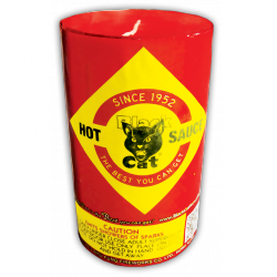 Add a little spice to your fountain collection.  A torrent of running sparks with scintillating yellow, blue, silver, and red make a hot palette. - See more at: http://www.blackcatfireworks.com/fireworks/fountains-200-gram/hot-sauce/#sthash.bqFqalae.dpuf