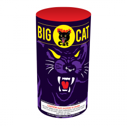 Big Cat has color & claw-like effects, like gold sparkling chrysanthemums & snow pines. The Cat finishes the fight with a big sparkler. - See more at: http://www.blackcatfireworks.com/fireworks/fountains-200-gram/bc-2208/#sthash.swtp61XY.dpuf