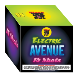 BC6393-4-Electric-Avenue_250